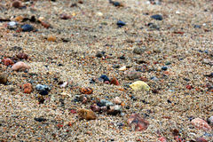 Macro molhado da areia Fotos de Stock