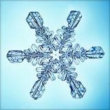 Macro morceau de flocon de neige en cristal naturel de glace Images libres de droits
