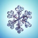 Macro morceau de flocon de neige en cristal naturel de glace Image libre de droits
