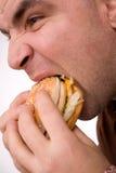 Macro mordace dell'hamburger dell'uomo su bianco Fotografia Stock
