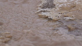 Macro Mount stream stock footage