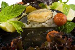 Macro mussel plate Stock Photos