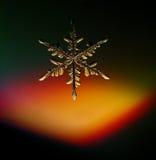 Macro naturale attuale dei cristalli di ghiaccio del fiocco di neve Fotografie Stock