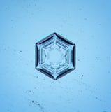 Macro naturel de flocon de neige Image stock