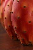 Macro nopal or cactus Stock Photos
