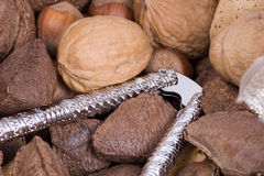 Macro nuts. A closeup of various nuts Stock Image