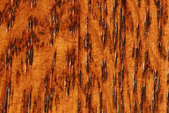 Macro of Oak Wood Grain Royalty Free Stock Images