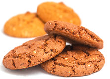 Macro oatmeal cookies isolated on white. royalty free stock photography