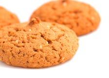 Macro oatmeal cookies isolated on white. stock image