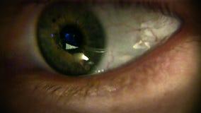 Macro oeil humain en gros plan banque de vidéos