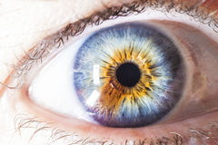 Macro oeil humain multicolore Photos stock