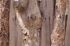 Macro old wood plank Stock Photos