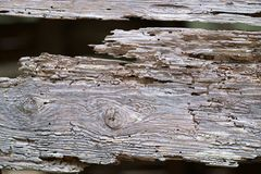 Macro old wooden board Royalty Free Stock Photos