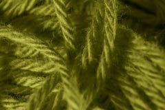 Macro Olive Green Yarn Wool Texture Background Stock Image