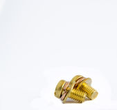 Macro of one brass screw Royalty Free Stock Photo