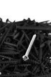 Macro, one brass screw in a pile of black screws Stock Photo