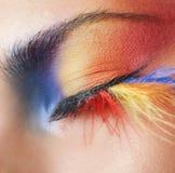 Macro oog van een vrouw met heldere oogschaduw stock afbeeldingen