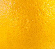 Macro of orange fruit texture Royalty Free Stock Image