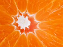 Macro of Orange Royalty Free Stock Photography