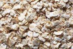 Macro of organic oatmeal Stock Image