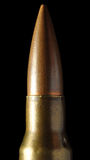 Macro pallottola Fotografia Stock
