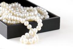 Macro pearls in  gift box Royalty Free Stock Image