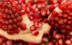Macro of peeled ripe pomegranate seeds Stock Photos