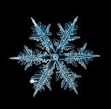 Macro pezzo del fiocco di neve di cristallo naturale di ghiaccio Fotografia Stock Libera da Diritti