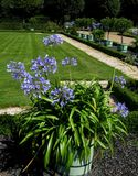 Macro photo with the background of the striking decorative elements of the Park landscape design. With the colors blue tubs under the open sky, as source for Royalty Free Stock Photo