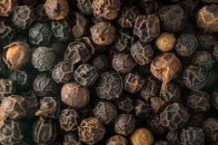 Macro photo of black peppercorn seeds Royalty Free Stock Image