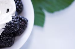 Macro photo of blackberry and cream. royalty free stock images