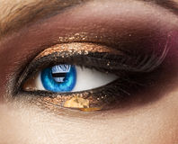 Macro photo of blue woman eye. looking away. with professional m Royalty Free Stock Photos