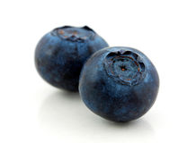 Macro photo of blueberry Stock Images