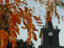 Macro photo with a bright decorative background texture of autumn leaves on a tree branch. On a vague unclear background of the Church building and street clock Stock Image
