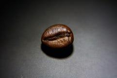 Macro photo of coffee bean Stock Image