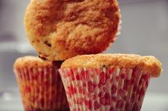 Macro Photo of Cupcake royalty free stock photo
