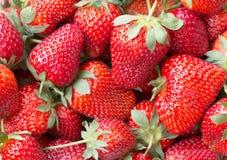 Macro photo d'une fraise mûre juteuse Image libre de droits