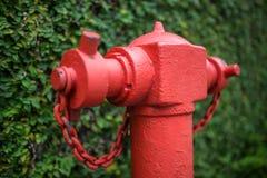Macro photo de bouche d'incendie Photos stock