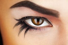 Macro photo of female eye with make up Royalty Free Stock Photography