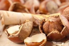Macro photo of hazelnut on vintage wooden background Royalty Free Stock Photography