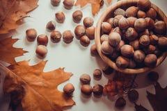 Macro photo of hazelnuts Stock Images