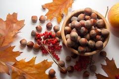 Macro photo of hazelnuts Royalty Free Stock Photo