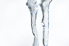 Macro photo of icicles on white Royalty Free Stock Photo