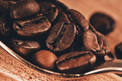 Macro photo of spoon with coffee beans Royalty Free Stock Image