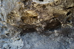 Macro photo of stone Royalty Free Stock Photo