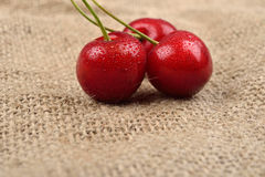 Macro photo of tree red cherries with water drops which are together on one green branch on jute background. Selective focus. Ligh Royalty Free Stock Images