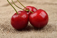 Macro photo of tree red cherries with water drops which are together on one green branch on jute background. Selective focus. Ligh Stock Photos
