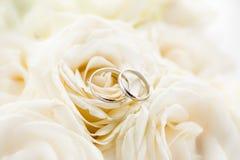 Macro photo of two platinum wedding rings lying on white roses. Macro shot of two platinum wedding rings lying on white roses Royalty Free Stock Photo
