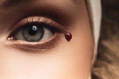 Macro photo of woman eye with ladybird Royalty Free Stock Photo