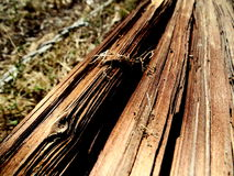 Macro Photograph of Cracked Wooden Pole Royalty Free Stock Image
